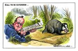 Cull to be extended... Image.